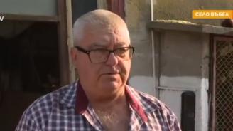 Стопанин: Чумата по свинете бе пренесена от комари