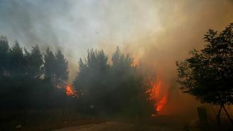Германските власти заявиха, че скоро ще успеят да потушат големия горски пожар, избухнал на бивш военен полигон