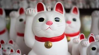 """Късметлийски котки """"посрещат"""" посетителите на храм в Япония"""
