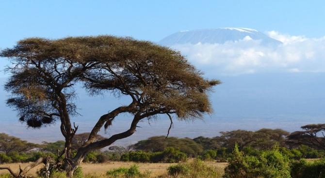 Властите в Кения са разпоредили депортирането на 17 чужденци, включително