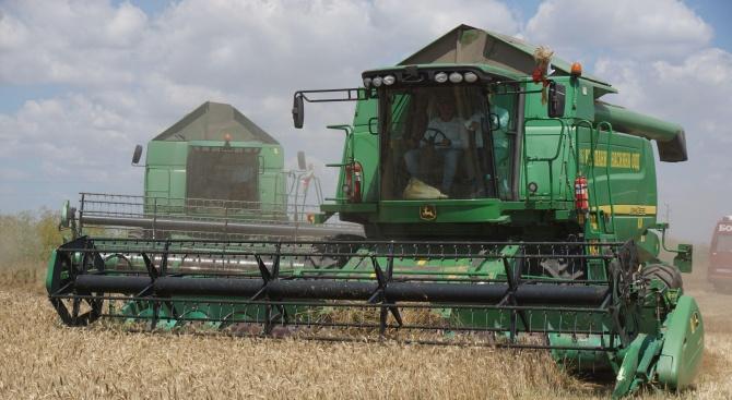 60% от площите с пшеница в Ямболско са ожънати при среден добив 467 кг от декар