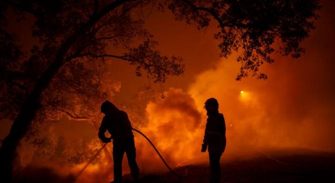 1000 пожарникари се борят с горски пожари в Централна Португалия