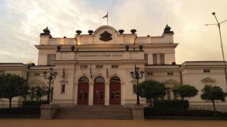 Депутатите избраха Галина Георгиева за член на СЕМ от квотата на Народното събрание
