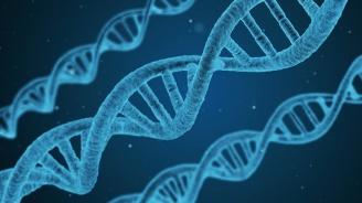 За пръв път съдебна грешка бе коригирана благодарение на генетичната генеалогия