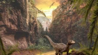 Палеонтолози от БАН ще разкажат какви най-древни животни са обитавали нашите земи