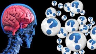 Най-краткият тест за интелигентност се състои само от 3 въпроса