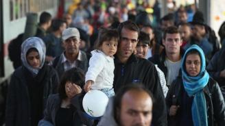 Чехия одобрила 47 молби на мигранти заубежище през 2018 г.