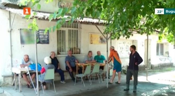 Напрежение в пловдивско село заради чумата по свинете