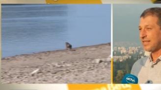 Метеоролог разкри ще завладее ли жегата България