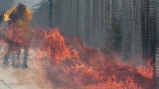 Още един възрастен южнокореец се самозапали в знак на протест срещу Япония