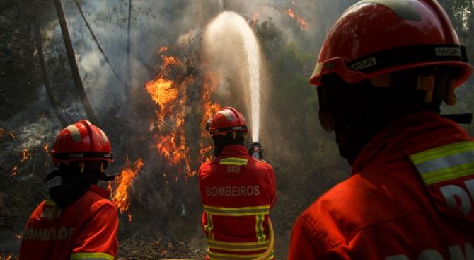 500 пожарникари се борят с горски пожар в Португалия