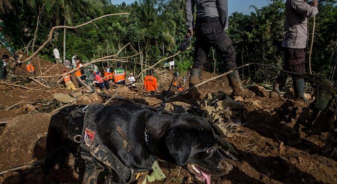 Свлачище погреба над 50 души в Мианма