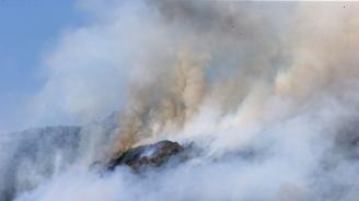 Площта на горските пожари в Сибир надхвърля 1,5 млн. хектара