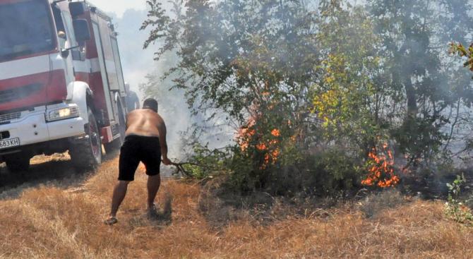 Районната прокуратура в Хасково разследва пожара между селата Родопи, Брягово и Любеново