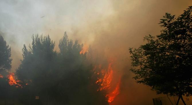 Ситуацията на обхванатия от пожари гръцки остров Евия се нормализира,