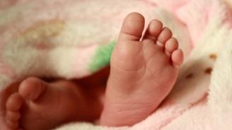 Намалява детската смъртност в Добричко