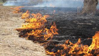 По десетина пожара в сухи треви гасят на ден огнеборците в Монтанско