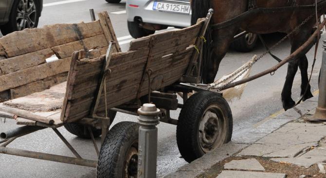 При тежка катастрофа в област Плевен загина водач на каруца.