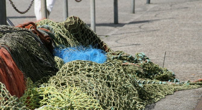 Бракониерска мрежа е извадена от доброволците на Централната рибно-опазваща организация