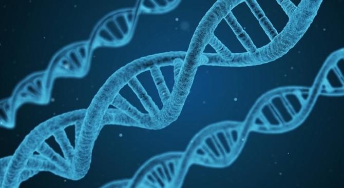 Американски учени заключиха, че за носителите на рядка генна мутация