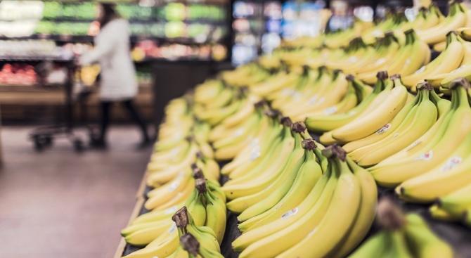 """Щамът, поразяващ плантациите на най-разпространения сорт банани """"Кавендиш"""", вече е"""