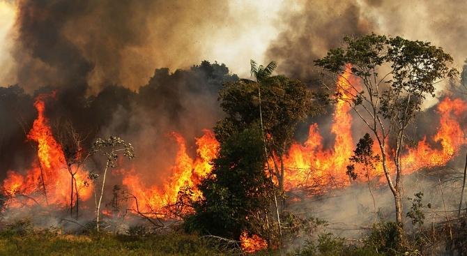 На остров Самос евакуираха туристи от хотелите заради пожара. На