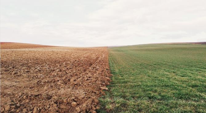 Цената на земеделската земя в област Русе е над средната