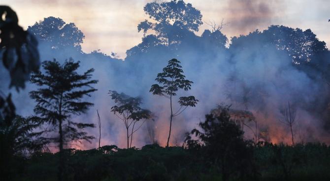 Опустошителните пожари в Амазония продължават да горят, съобщава БНТ. Около