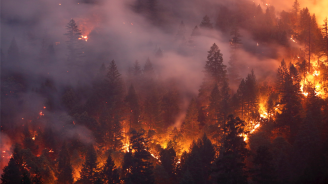 Евакуираха над 9000 души на Канарските острови заради пожара