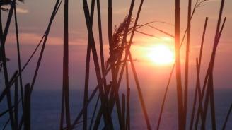 Горещите вълни и силните дъждове ще продължават по-дълго заради климатичните промени