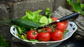 Експерт: Внасяме домати и краставици най-много от Турция и Гърция