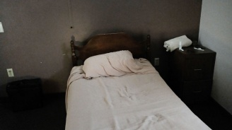 Западнонилската треска взе първата си жертва в Сърбия  за 2019 г.