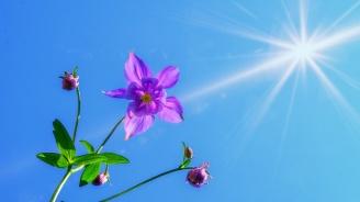 Слънчево и горещо време ни очаква днес