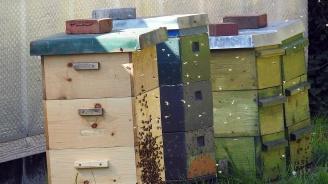 Къща и пчелни кошери изгоряха в Смолянско