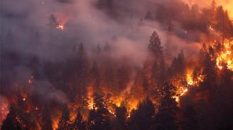 МВнР: Няма пострадали българи при пожарите на Гран Канария