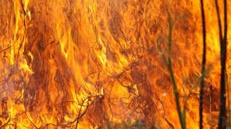 Сухи треви горят до пловдивското село Йоаким Груево