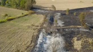 Търсят кой е подпалил пожара край двореца в Кричим