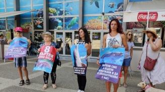 Варненци искат закриването на Делфинариума