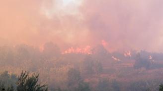Голям пожар е избухнал между харманлийските села Поляново и Преславец