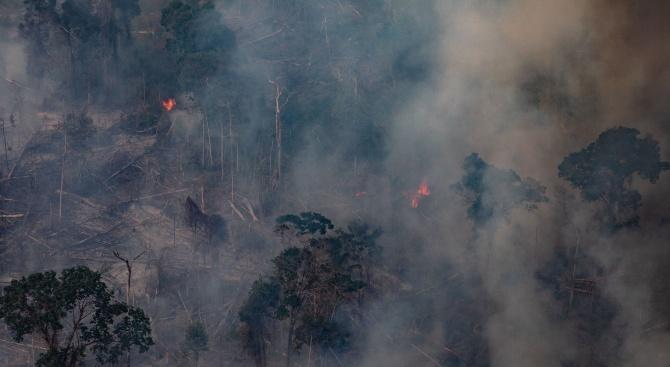 Пожарите в Амазония са под контрол след разполагането на 2500