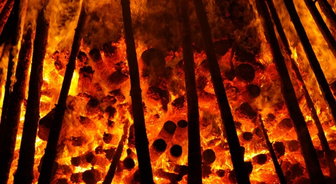 5 дка иглолистна гора изгоряха при пожар край село Кремене
