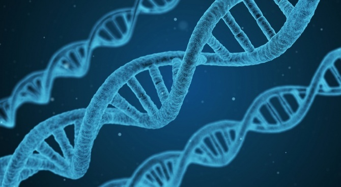 Генетична мутация е причината някои хора да се наспиват само