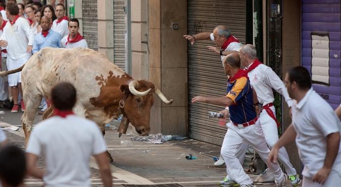 Мъж бе наръган до смърт от бик в Централна Испания,