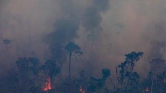 Военни самолети обливат с вода горящите тропически гори в Амазония