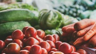 В Плевен приключи цялостният ремонт на пазара за плодове и зеленчуци