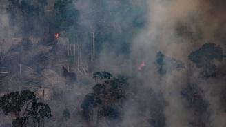 Ситуацията в Бразилия не е проста, но е под контрол, заяви министърът на отбраната