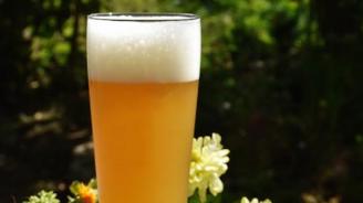 За пръв път в България изследваха съдържанието на ксантохумол в бирата