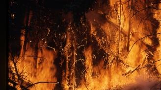Продължава борбата с пожарите в Боливия