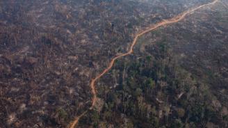 Съседите на Бразилия призоваха за среща и пакт за Амазония