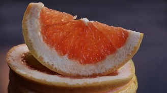 Двойка от Луизиана отгледа най-големия и най-тежък грейпфрут в света
